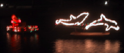 Christmas Lights at Salt River